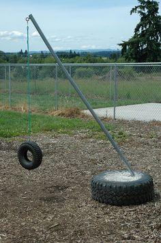 Dog tire swing