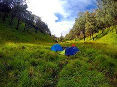 Bulak Peperangan of Mt. Lawu (Mei '16)  #mountain #volcano #backcountry #outdoor #highlander #adventure #explore #gopro #getoutstayout #backpacking #view #savana #camp #indomountain #parapejalan #id_pendaki #kompasnusantara #goprooftheday #landscape #wanderlust #majapahit #historical #myth by stephensinarto http://bit.ly/AdventureAustralia
