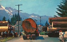 Albany oregon 39 s beautiful historic amtrak station for Motor vu drive in dallas oregon