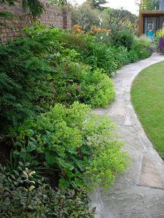 Curved sandstone path Alchemilla Mollis, Evergreen Landscape, West London, Garden Spaces, Surrey, Gardening Tips, Paths, Garden Design, Sidewalk