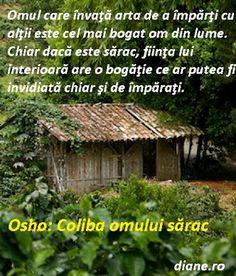 Live Your Life, Osho, True Words, Inspirational Quotes, Advice, Meditation, Album, Diamond, Places