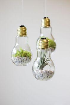 3 Pack Glass Light Bulb Hanging Terrariums Planters