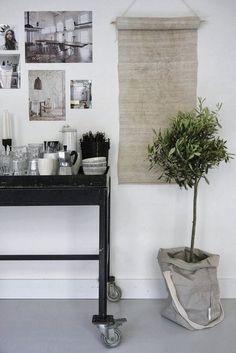 Plant Storage Ideas