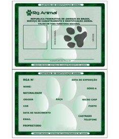 """esqueça de colocar a foto mais bonita do seu animal . Compartilhe isso: 6 Relacionado Convivendo com animais em casa junho 25, 2016 Em """"Cuidados"""" Seu cachorrinho ficando lindo. julho 21, 2016 Em """"Cuidados"""" Dicas de como tirar fotos do seu cachorro abril 14, 2016 Em """"Comportamento"""" Cuidados, Monitorando seu cãozinho Navegação de Post Proteja seu animal de estimação contra perigos do jardimCACHORROS TÊM SENTIMENTOS COMO OS HUMANOS Deixe uma resposta O seu endereço de e-mail não ..."""