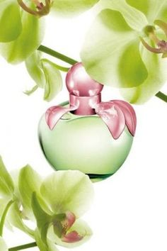 Tendance parfums Love by Nina Nina Ricci perfume a fragrance for women 2009 Perfumes Nina Ricci, Dali, Shades Of Green, Pink And Green, Emerald Green, Genie In A Bottle, Beautiful Perfume, Smell Good, Pretty In Pink