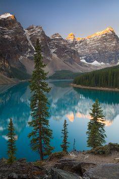 Sentries of Moraine Lake, Banff National Park, Canada