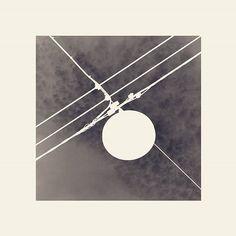 #blackandwhite #bw #eos7d #canon #bologna #bolognacittà #bolognaart #rete #ragnatela #sky #energy #highvoltage #altatensione #net #lines #cielo #web #lines #order #negative #negativo #art #instagood #instadaily