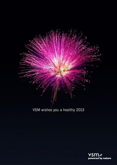 VSM: Nature's firework, 1: Advertising Agency Roorda reclamebureau
