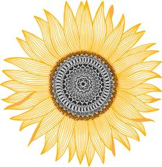 Golden Mandala Sunflower