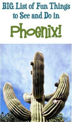 BIG List of Fun Things to See and Do in Phoenix! ~ from The Frugal Girls ~ you'll love all these fun insider travel tips for your next vacation to AZ! Oh The Places You'll Go, Places To Travel, Places To Visit, Road Trip Usa, Arizona Travel, Arizona Trip, Arizona Usa, Stuff To Do, Things To Do