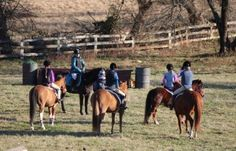 The riding instructor - blog with tips about teaching riding
