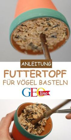 Vogelfutter selber machen: Anleitung und Rezept We'll show you how you can make bird food yourself and make a food pot GEOlino.de, Ground Beef Crock Pot Recipes - Over 30 easy and delicious recipes - Beef Pin by Rosario Valencia on cooking Cute Diy Crafts, Food Crafts, Simple Crafts, Clay Crafts, Winter Crafts For Kids, Diy Crafts For Kids, Bird Food, Winter Food, Winter Diy