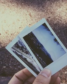 Physical memories with Fujifilm Instax Mini 90 film | Alta Plaza Park in San…