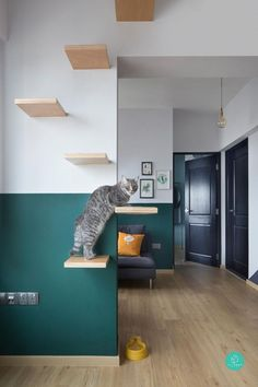 5 cat-friendly playgrounds at home - pet ideas - The Effective Pictures We Offer You About Cat Playground Outdoor play areas A quality picture can tell you many things. You can find the most be Cat Playground, Playground Design, Playground Ideas, Modern Playground, Casa Retro, Cat Tent, Cat Room, Outdoor Cats, Outdoor Play