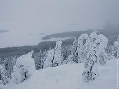 Национальный парк Коли, Финляндия