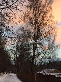 Sunset Stockholm!!!