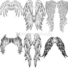 Hand Drawn Wings Vector Graphics
