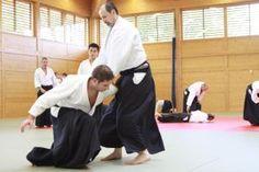 Aikido Lehrgang des österreichischen Aikidoverbands im Budokan Wels, Oktober 2013 - Sanyko