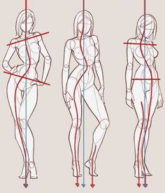Drawing Female Body, Body Reference Drawing, Human Figure Drawing, Figure Sketching, Art Reference Poses, Fashion Figure Drawing, Person Drawing, Anatomy Drawing, Anatomy Art