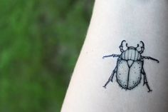 2 PACK June Bug Beetle Temporary Tattoos Black Ink by NatureTats