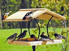 Birds Choice Wrought Iron & Cedar Fly-Thru-Best Seller. $99.00
