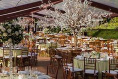 Mariana e José Leonardo tiveram um casamento em Campos do Jordão. A Petit Decorações usou hortênsias, suculentas e árvores francesas na decoração!