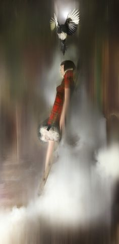 Catalogue Images: Nick Knight - Isabella Blow: Fashion Galore! - SHOWstudio - The Home of Fashion Film