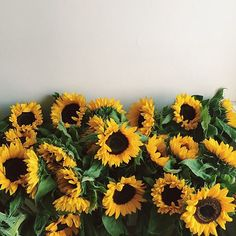 Flowers. Always and always. My favorite-sunflowers!