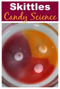 Skittles Candy Science Experiment for Kids