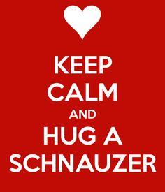 http://sd.keepcalm-o-matic.co.uk/i/keep-calm-and-hug-a-schnauzer-2.png