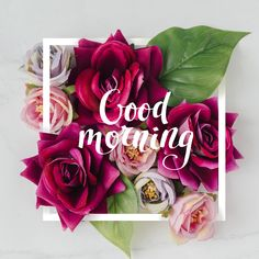 Good Morning Hug, Good Morning Texts, Good Morning Messages, Good Morning Greetings, Good Morning Wishes, Morning Quotes, Morning Start, Latest Good Morning Images, Good Morning Images Flowers