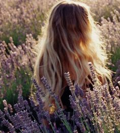 at peace #lavender #field