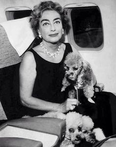 Joan Crawford and her pet poodles on an airplane