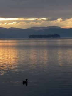 living naturaLea: 2013 photography - Lake Champlain, VT
