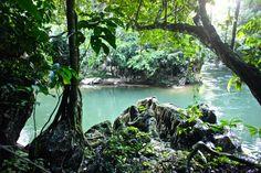 Reserva Natural Cañon de Rio Claro