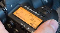 Canon EOS 5D Mark IV im Test: Grundsolides Arbeitstier mit einer Portion Extravaganz