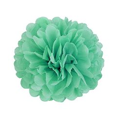 Festive & Party Supplies Artificial & Dried Flowers Diameter 25cm 5pcs Paper Pompom Tissue Flowers Balls For Home Wedding Party Car Room Decoration Mariage Pompon Crafts Supplies Relieving Heat And Thirst.