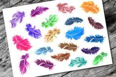 Watercolor feathers by katya.bogina on @creativemarket