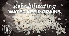 Do your water kefir grains smell funny? Or stopped making kefir? Learn how to repair damaged water kefir grain so you can get back to making water kefir. Home Fermenting, Kombucha Fermentation, Fermentation Recipes, Kefir How To Make, Making Kefir, Kefir Recipes, Drink Recipes, Vegan Recipes, Making Water
