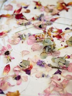 Natural Dye Fabric, Natural Dyeing, Tie Dye Crafts, Sustainable Textiles, How To Preserve Flowers, Diy Arts And Crafts, How To Dye Fabric, Flower Petals, Dried Flowers