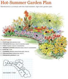 hot summer garden plan