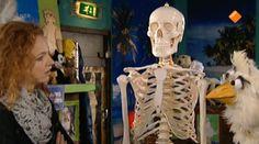 HBB Het skelet - Bij het clubhuis wordt een pakketje bezorgd. Er zit een skelet in! Carlijn en Raaf zijn een beetje onhandig, waardoor het hele skelet uit elkaar valt. Terwijl Carlijn in het clubhuis het skelet in elkaar probeert te zetten, leert Raaf veel over verschillende botten in het ziekenhuis. bot - skelet - ziekenhuis