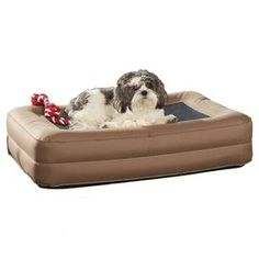 Inflatable indoor/outdoor pet bed with dual air chambers. Repair kit and foot pump included.  $19.95