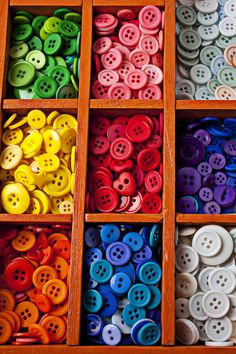 Compartments Full Of Buttons Photograph  - Compartments Full Of Buttons Fine Art Print