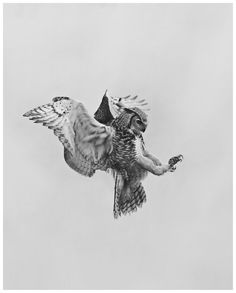 birds of prey by Geoffrey Knott Owl Tattoo Drawings, Animal Drawings, Owl Tattoos, Tattoo Ink, Fish Tattoos, Tatoos, Lechuza Tattoo, Bird Of Prey Tattoo, Pray Tattoo