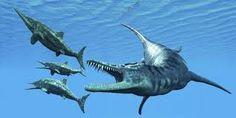 dinosaurios reales marinos - Buscar con Google