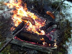 Watermelon Salad, Wildlife Nature, Finland, Wander, Salmon, Food And Drink, Hiking, Camping, Seasons
