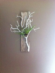 Items similar to Gray Stained Barn Wood, with Coral White Branch, Air Plant Holder and Wall Hanging on Etsy Gray Stained Barn Wood, mit Coral White Branch, Luftpflanzenhalter und Wandbehang Driftwood Projects, Driftwood Art, Deco Floral, Arte Floral, Plant Wall, Plant Decor, Diy Wall Planter, Wall Planters, White Branches