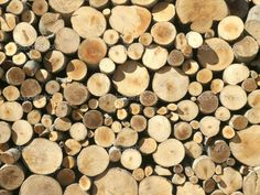 Neat Log Stacks