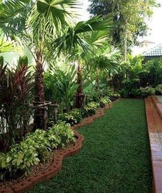 Below are the Small Palm Trees Gardening Ideas For Backyard. This article about Small Palm Trees Gardening Ideas For Backyard was posted under the Outdoor category by our team at July 2019 at pm. Hope you enjoy it . Tropical Backyard Landscaping, Palm Trees Landscaping, Tropical Patio, Florida Landscaping, Front Yard Landscaping, Backyard Patio, Landscaping Ideas, Garden Pool, Backyard Designs